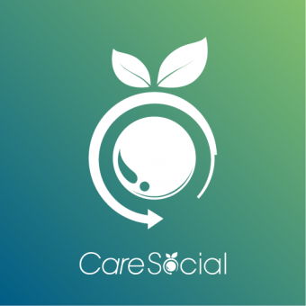 CareSocial BfS Schnittstelle, monatlich